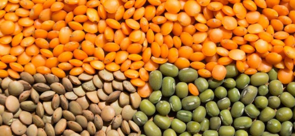 Délicieuses recettes de lentilles: plats d'accompagnement et plats principaux